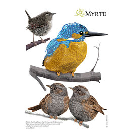 Myrte Wandtattoos Gartenvogel Mix