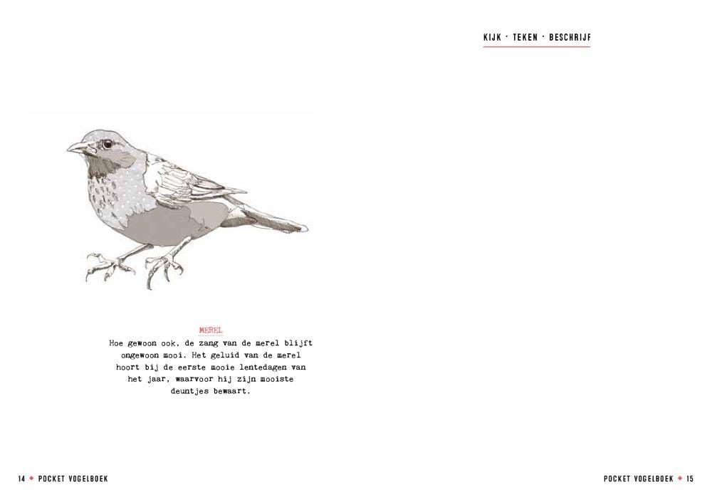 Pocket Vogelboek