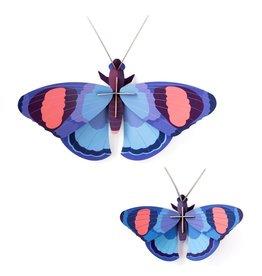 Studio ROOF Deluxe Peacock Butterflies