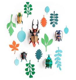 Studio ROOF Wall of Curiosities, Beetle Antiquairy