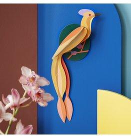 Studio ROOF Paradiesvogel, Olango