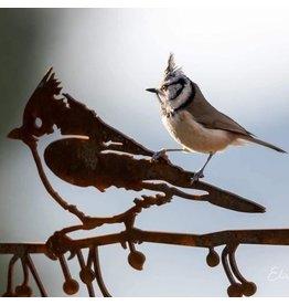 Metalbird Crested tit