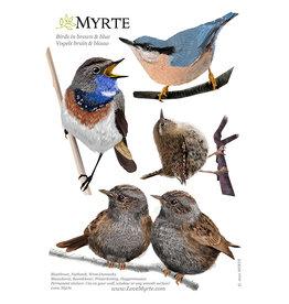Myrte Muursticker Vogels in Blauw en Bruin