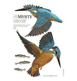 Myrte Muursticker Kingfisher im Flug