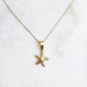 BY NOUCK BY NOUCK Choker | Starfish | Gold
