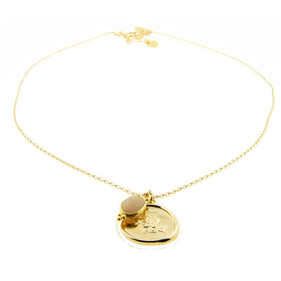 LILLY LILLY Ketting | Twig Coin Mini Lapi | Verguld  | Maansteen
