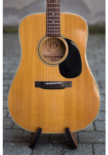Vega Dutch Craftmanship Acoustic Guitar 1972