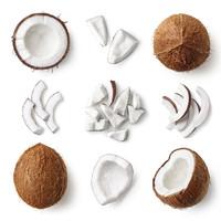 Kokosgenuss: harte Schale, leckeres Multitalent