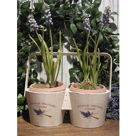 Appletree Houten duo bloempotje Lavendel