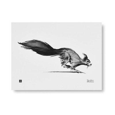 Teemu Järvi  Poster Squirrel 30x40cm