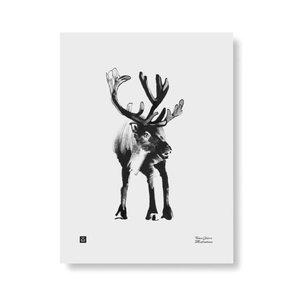 Teemu Järvi  Poster Forest Rendeer 30x40cm