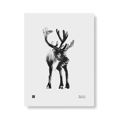 Teemu Järvi  Poster Forest Reindeer – gedrukte inkt illustratie 30x40cm