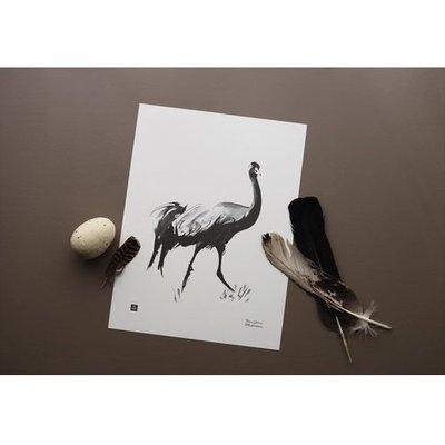 Teemu Järvi  Poster Common Crane - 30x40cm - inkt illustratie