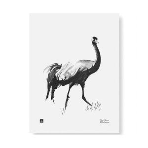 Teemu Järvi  Poster Common Crane 30x40cm