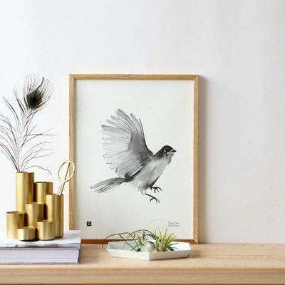 Teemu Järvi  Poster Siberian Jay - pen illustratie 30x40cm