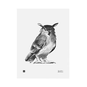 Teemu Järvi  Poster Eagle Owl 30x40cm