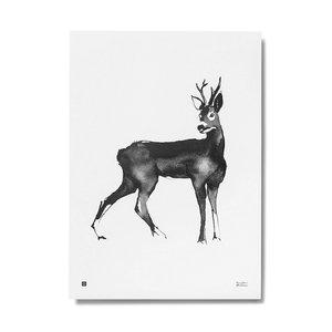 Teemu Järvi  Poster Roe Deer 30x40cm