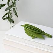 LOVI 3D kaart Bird groen 12cm  - Fins design