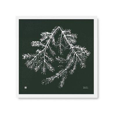 Teemu Järvi  Poster Sparrentak 50x50cm - uniek Fins design
