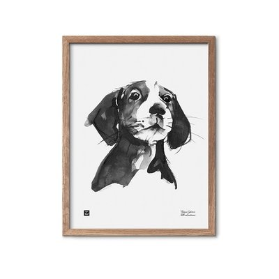 Teemu Järvi  Poster Hond - A treat, please? -  30x40cm
