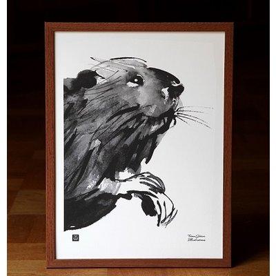 Teemu Järvi  Curious beaver poster - 30x40cm