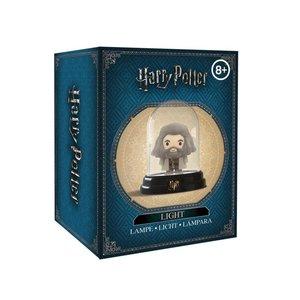 Harry Potter shop Bell Jar lamp Hagrid