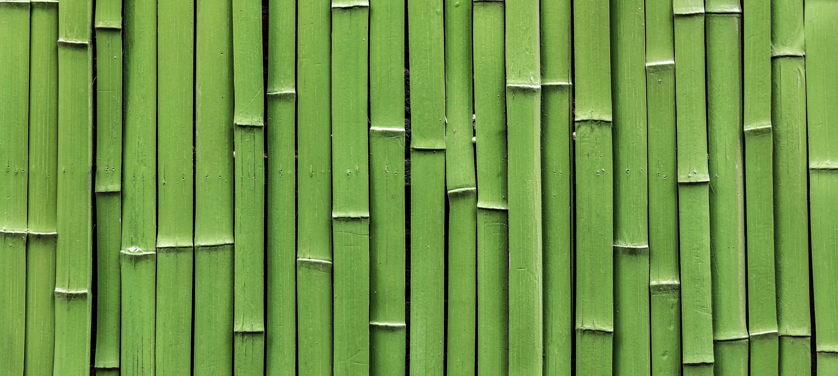 Stop met plastic en ga voor bamboe!