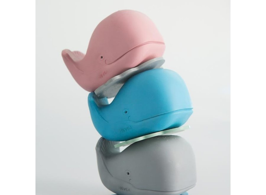 Harald Whale The Whale Bath Toy - Blue