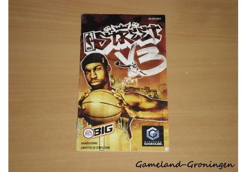 NBA Street Vol 3 (Manual)