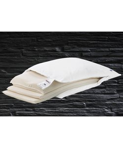 Ergo Magic Pillow (Cushion)