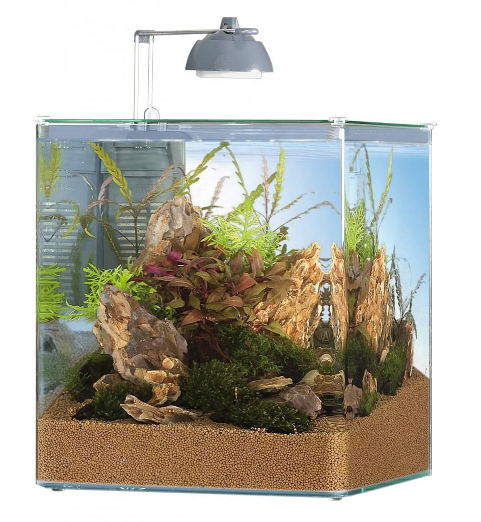 nano Becken Fische & Aquarien Eheim Aquastyle 16 Aquarien
