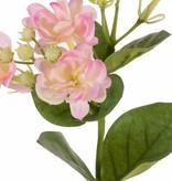 Jasminzweig (Jasminum), 5 Bl, 10 Knsp, 6 Blt, 35cm