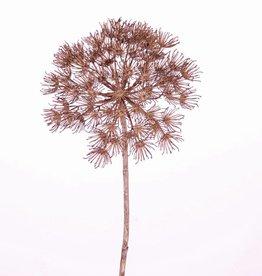 """Allium-Zweig """"Grande"""" Ø 22cm, 80cm"""