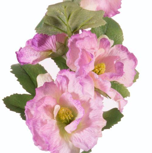 """Alcea Rosea (hollyhock) """"Spring Dream"""" x9flrs, x7buds, x9lvs, 87cm"""