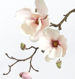 Magnolia with 2 flowers,  pick, 48cm