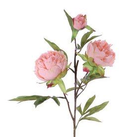"Peony ""Spring Dream"", x2flrs ø10/8cm, 1bud ø4cm & 25lvs, 73cm"