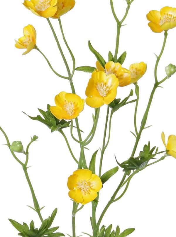 Meadow buttercup spray (Ranunculus Acris) , 12 flowers, 3 buds , 7 leaves, 68 cm