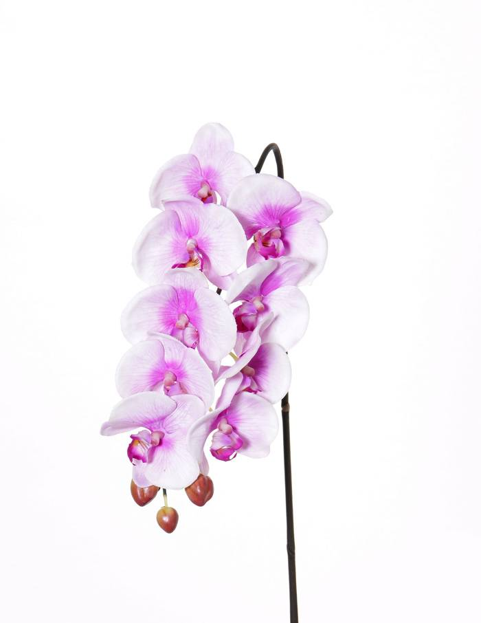 """Phalaenopsis (orchid) """"Natural touch"""" x9 flrs & 3 bds (polyfoam), 43cm"""