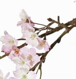 Flor de manzana 104cm
