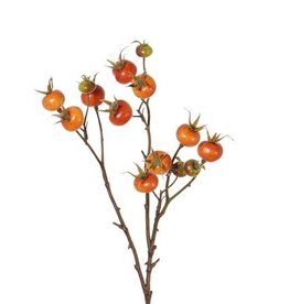 Rose hip spray, Rosa rugosa, 14 fruits, 66cm