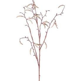 Birkenzweig mit 25 Birken-Kätzchen (Betula pendula), 66cm