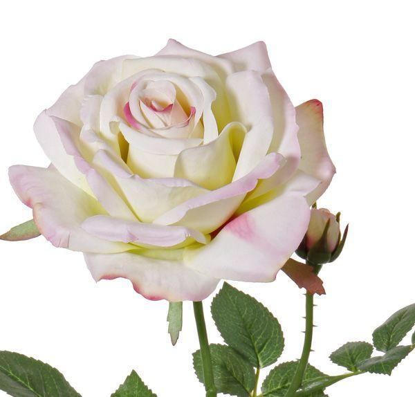"""Rose de luxe """"Fleuri"""", Ø 12cm, 1 Knospe, 20 Blätter, 70cm"""