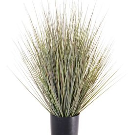 Gras- Busch im Topf, 61cm