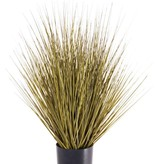 Grass bush in pot, 61cm