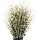 Hierba con maceta, 76cm