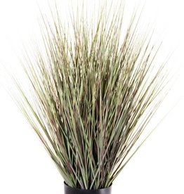 Grass bush in pot, 76cm