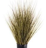 Grass bush in pot, 76cm