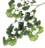 Ginkgo Biloba (Japanischer Tempelbaum) Blattzweig mit 52 Blättern, 70cm - schwer entflammbar