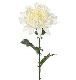 Chrysanthemum Ø 16cm,  3 hojas, 76cm