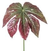 Fatsiablad (Vingerplant) ø33cm, coated, lange steel, 81cm